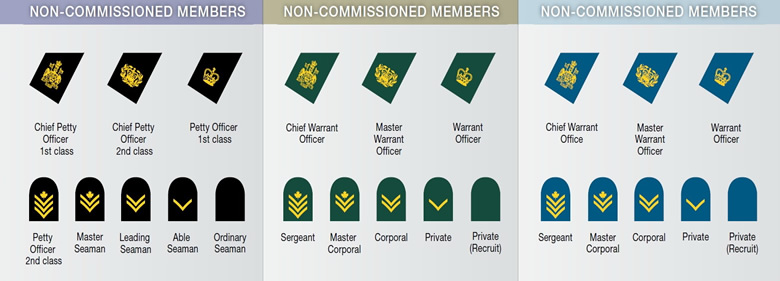 Theme of the day:army non commissioned officer ranks