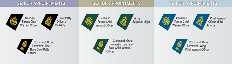 canadian senior appointments military chart